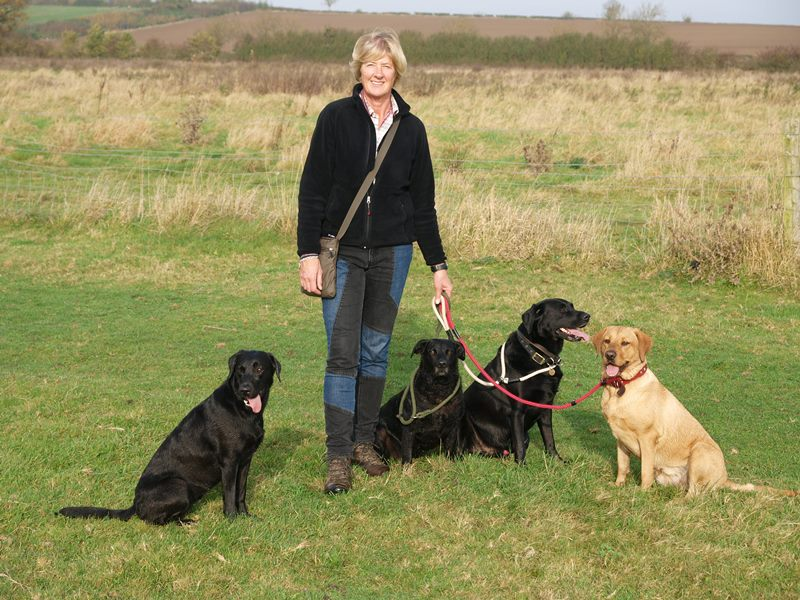 Helen and her dogs out walking in Market Harborough